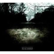 Some Pedestrians - Blackbird (CD EP scan)